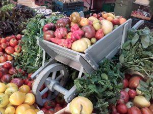 agriculture traditionnelle cévenole